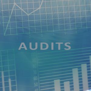 Audit blog